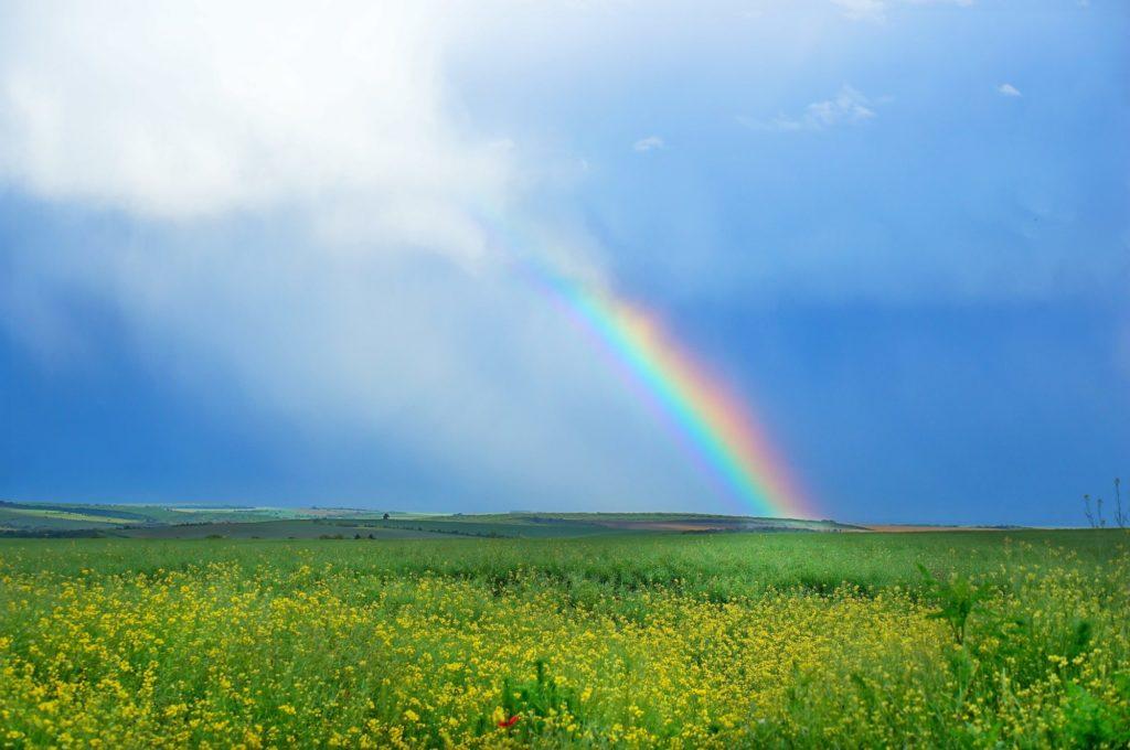 この世界いっぱい_虹
